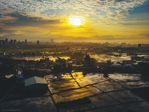 晨曦 稻田 郊區 倒影 日出而作 農家 田野 台中日出 曙光 晨光 日出 sunrisephoto morning sunrise aerial photography aerialphotography taichung city sky skyline tawian sunset taiwan drone birdview 空拍 空拍機 空拍攝影 大疆 mavic 鳥瞰 台中市 台中