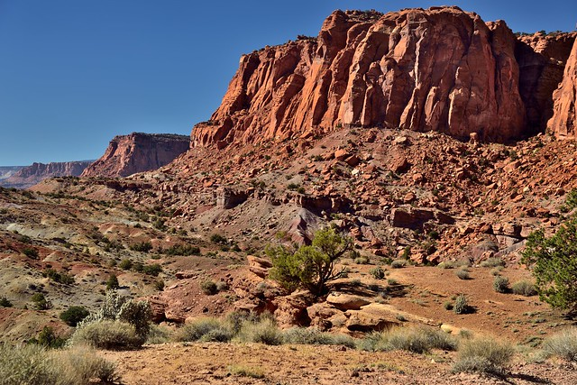 Red/Orange Cliff Walls Seen While Walking the Chimney Rock Loop (Capitol Reef National Park)