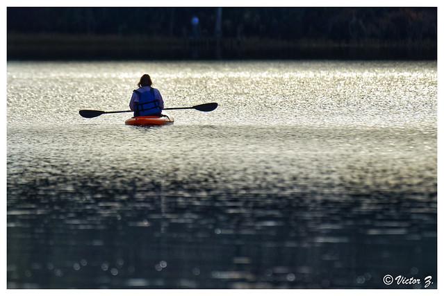 Canoe, Paynes Prairie Preserve State Park Florida -42