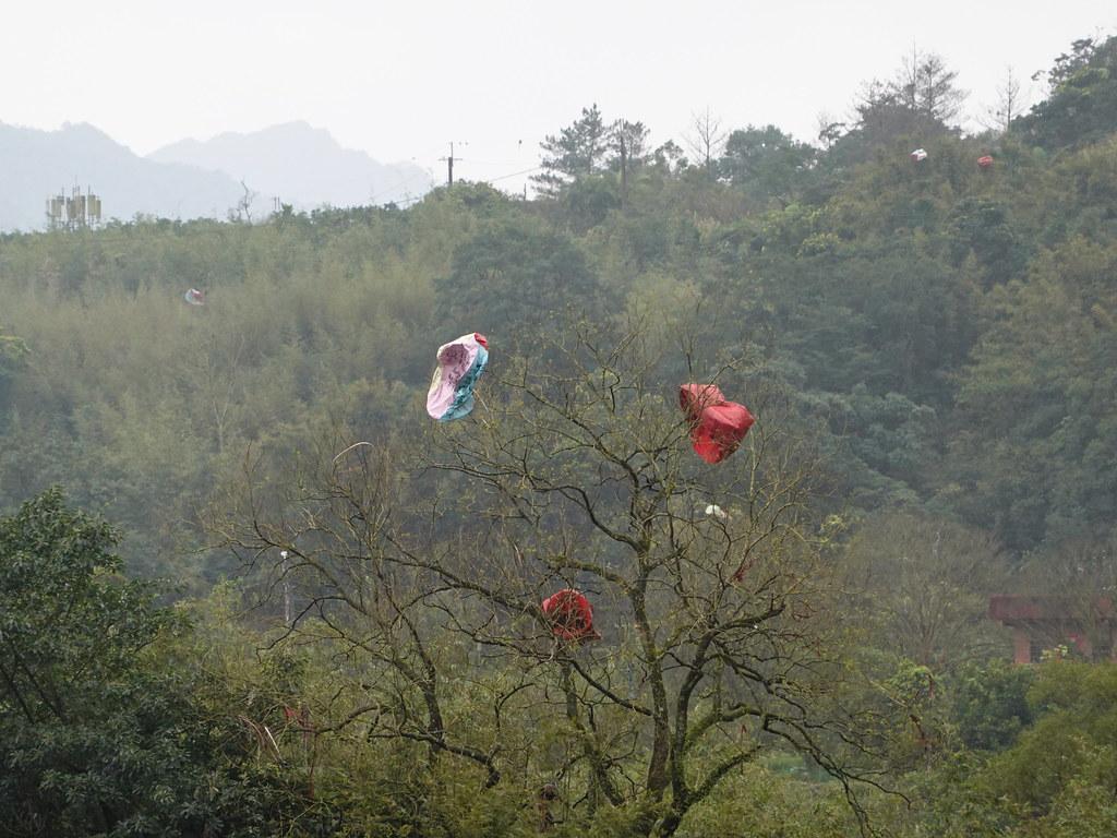 天燈降落後有些會被民眾撿走,有些則掛在樹林間。孫文臨攝