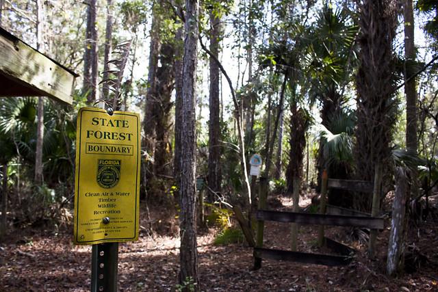 Chuluota Wilderness