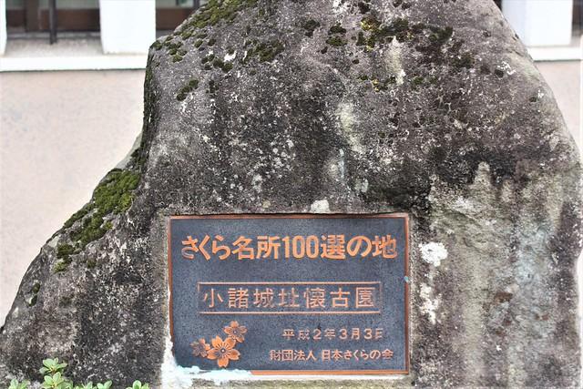 komorojo-stamp017