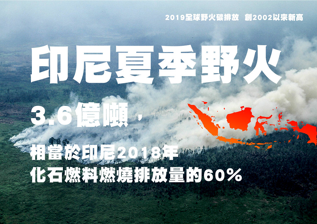 2019全球野火碳排放