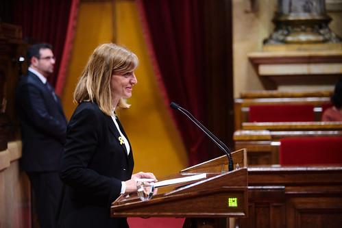 Ple del Parlament (13-2-2020)