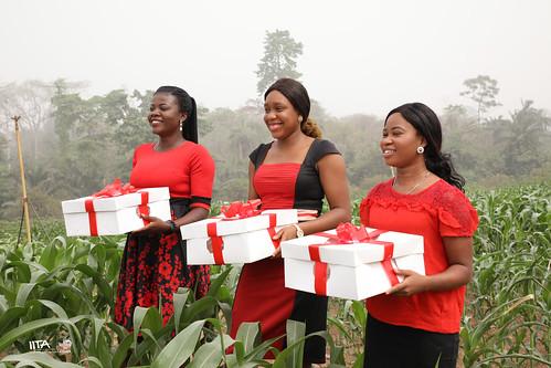 akinyele oyo nigeria foods valentineday technologies aflasafe nodumax sahcassava transformation agrigulture iita africa