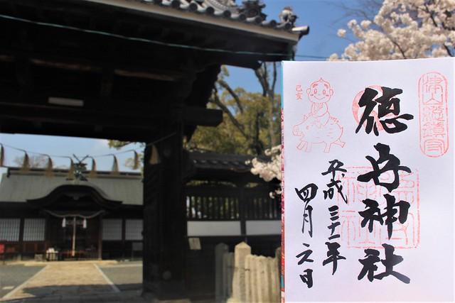tsuyamajo-sakura017