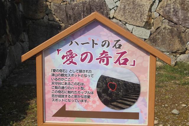 tsuyamajo-sakura061