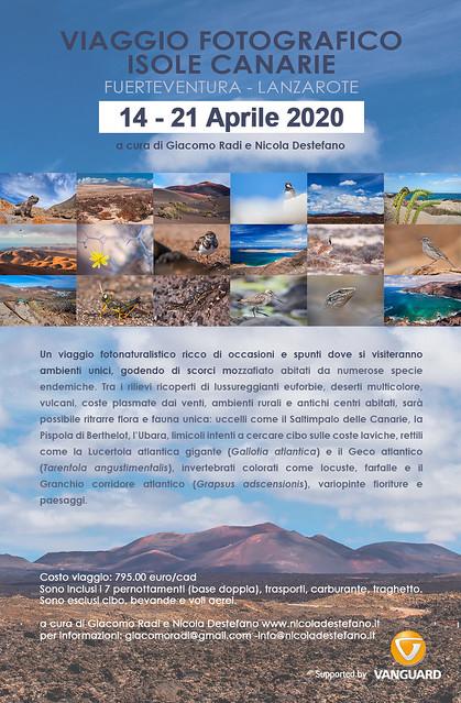 Viaggio fotonaturalistico Isole Canarie 14-21 aprile 2020
