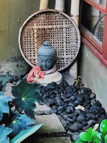 "buddha""livinginajungle"" riverrock bambootray scarf gauze susanfordcollins livinginajungle clusia"