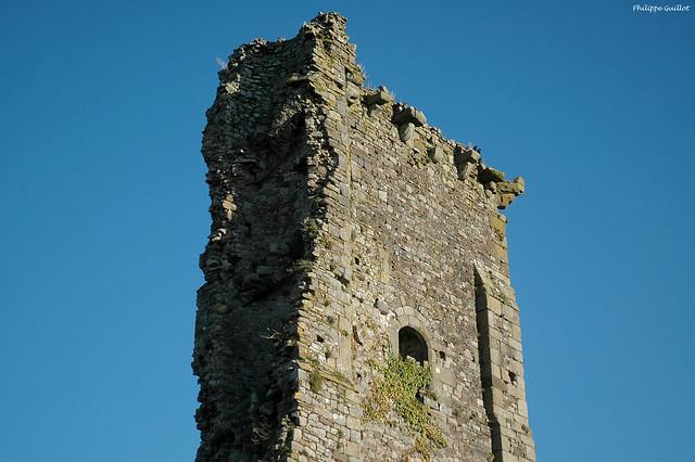 Le donjon du château de Regnéville ou ce qu'il en reste