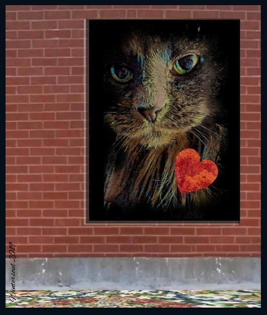 love cat......2020 02 14