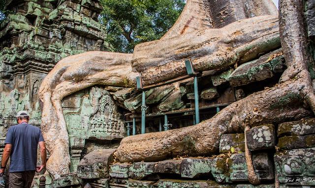 2019 - Cambodia - Siem Reap - Ta Prohm - 14