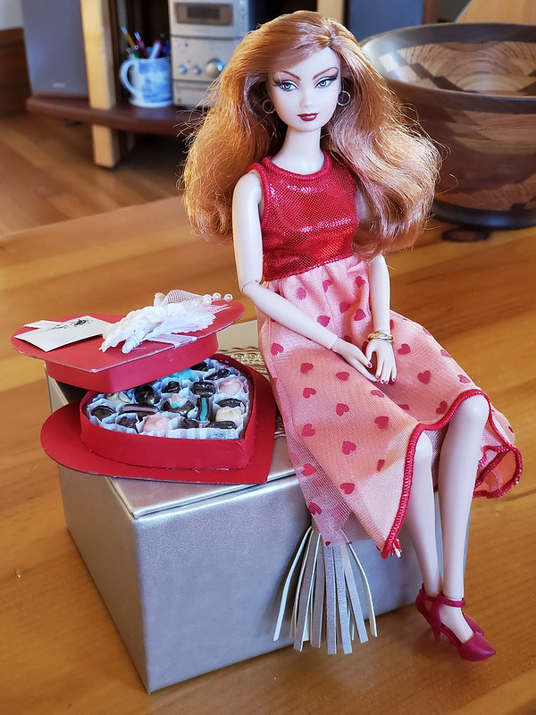 Happy Valentine's Day!  I've been too sick to do anything fancy, but I managed to dress Lucky in this fun dress.  Now I can get back under a blanket.  :>)