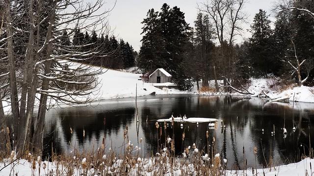 Unfrozen former mill pond, Horning's Mills, Dufferin County, Ontario