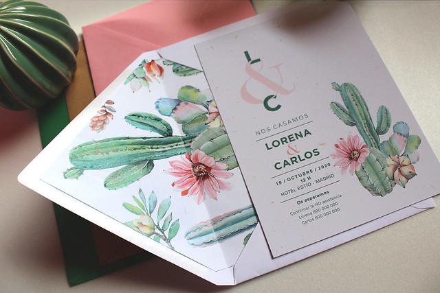 cactus_flor_rosa (3)