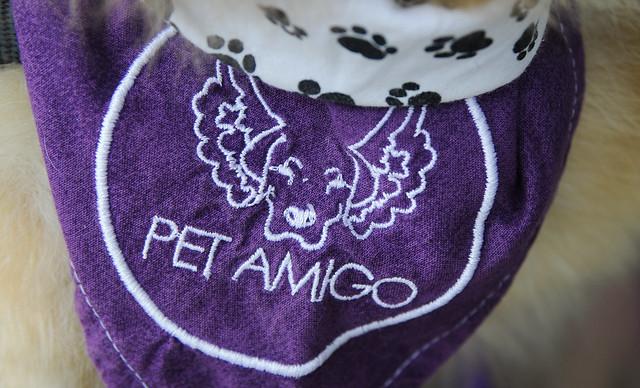 Pet Amigo no Hospital de Apoio