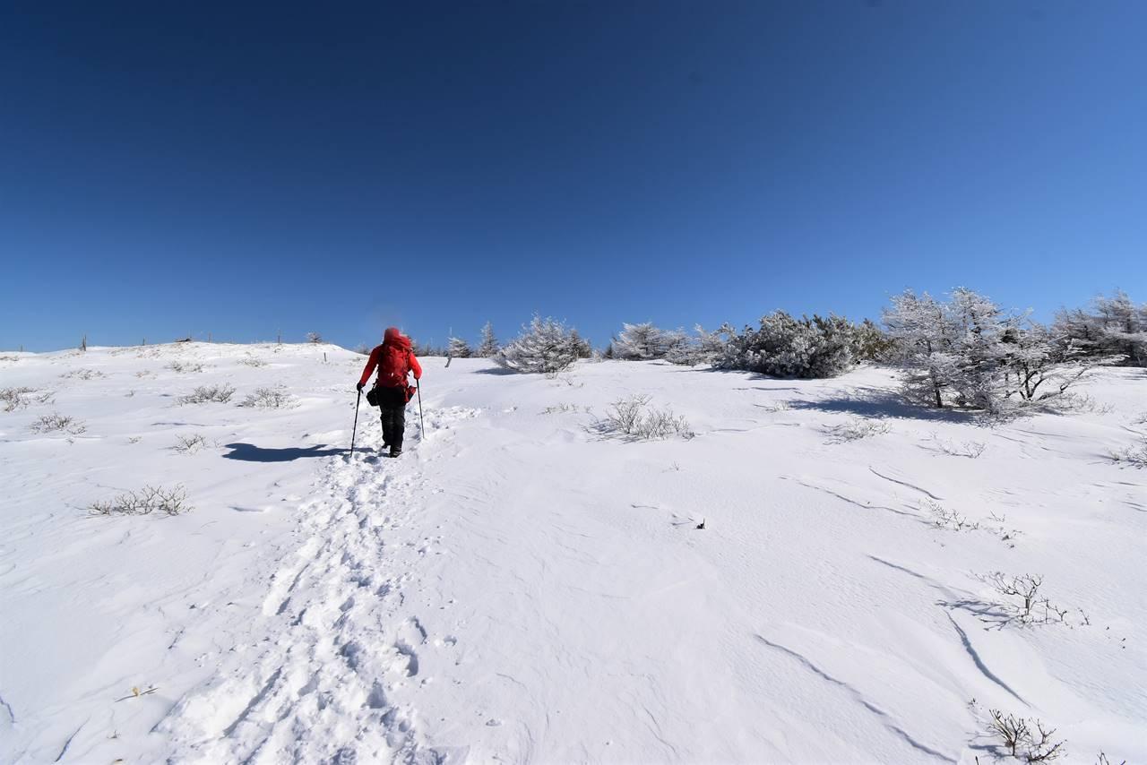 鉢伏山 雪山登山