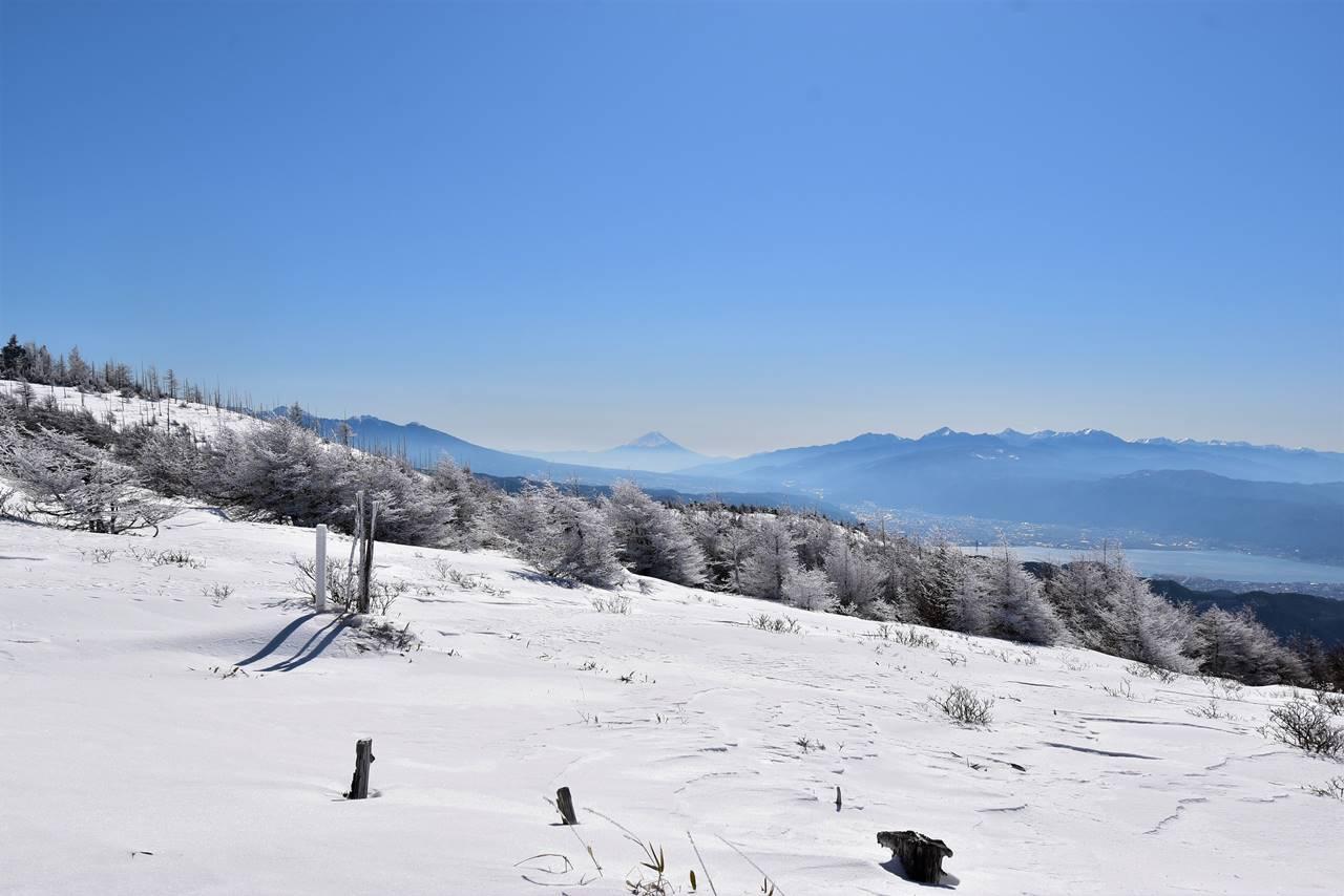 鉢伏山山頂から眺める富士山