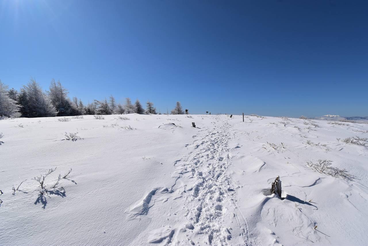 鉢伏山登山 広大な山頂