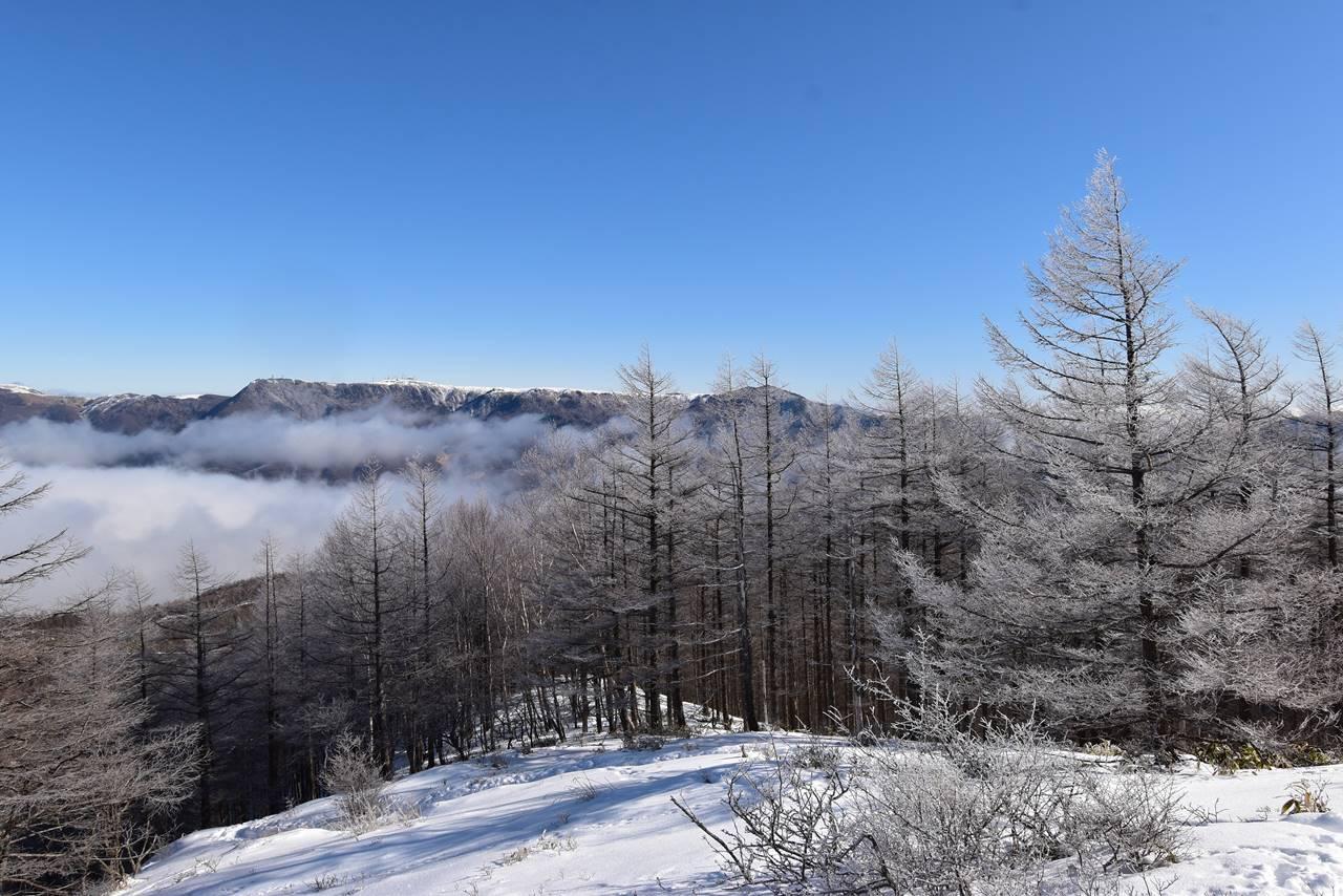 鉢伏山の霧氷と美ヶ原の展望