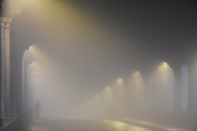 Tra luci e nebbia - Between lights and fog.