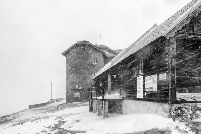 ottohaus