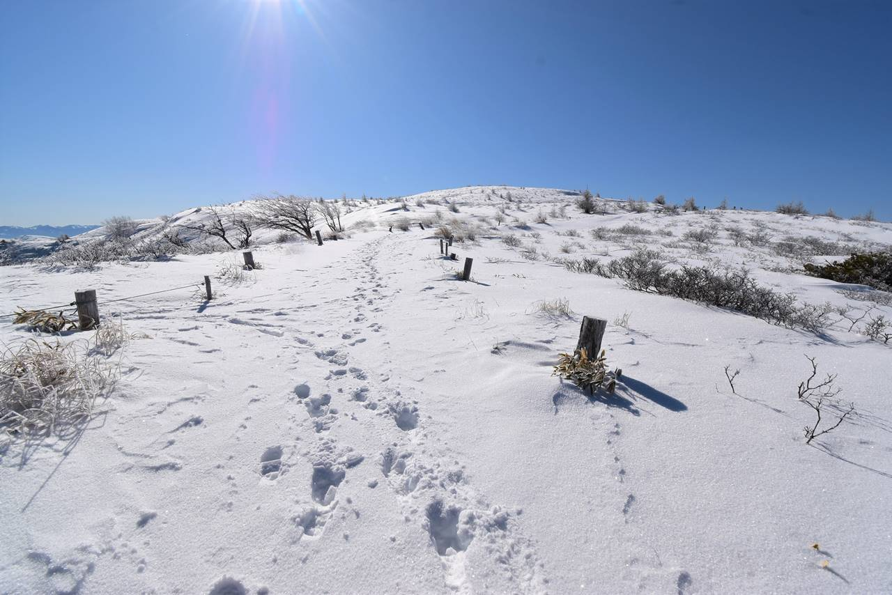 冬の鉢伏山 雪山登山