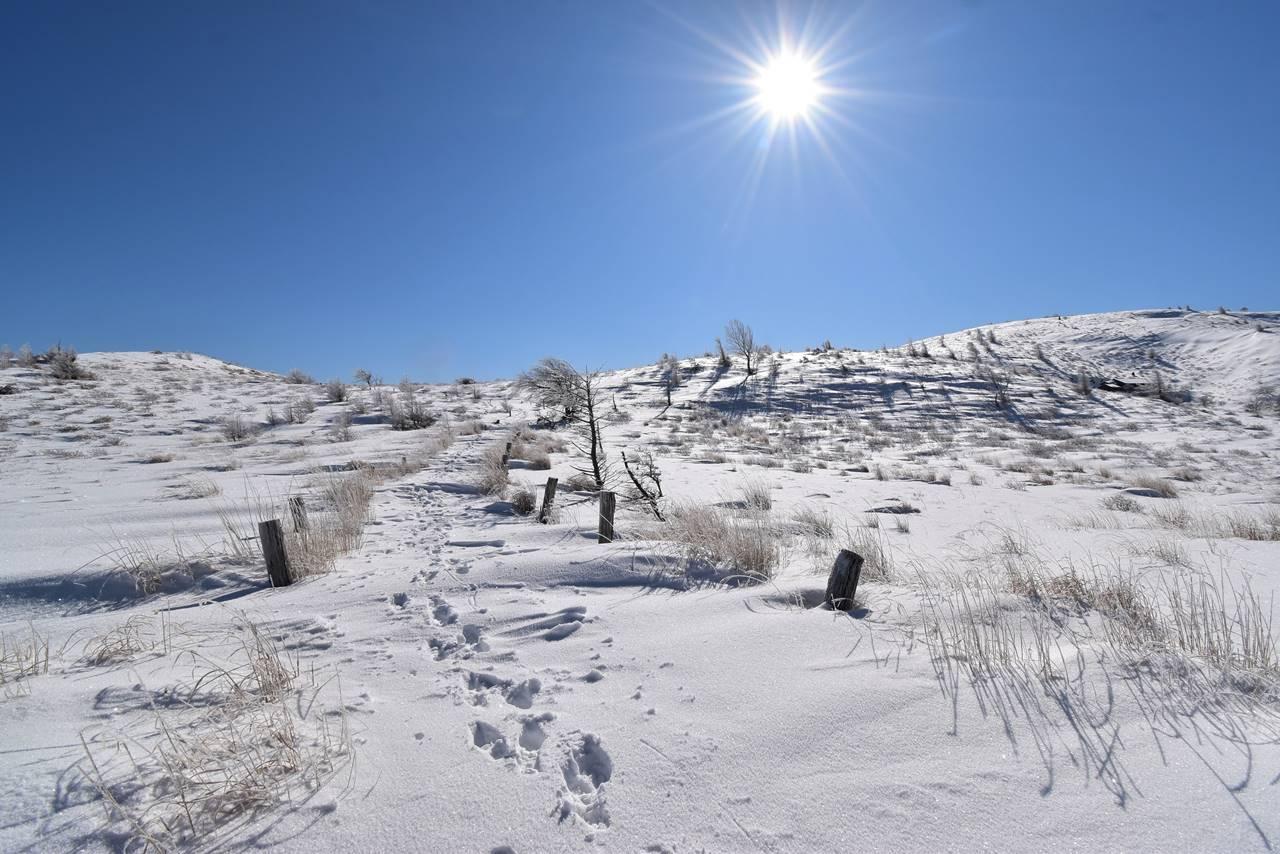 冬の鉢伏山 山頂の雪原風景