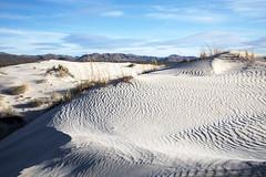 Salt Basin Dunes at Guadalupe Mountains National Park