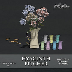 Hyacinth Pitcher