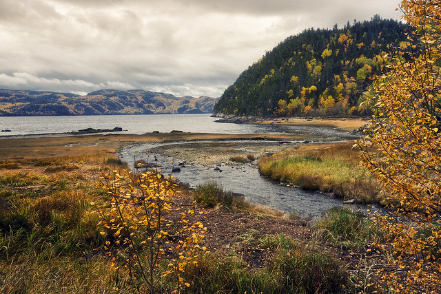Couleurs d'automne le long de la rivière Saguenay