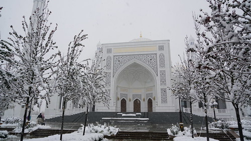 russia russianorthcaucasus chechnya shali