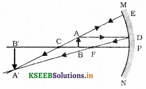 Karnataka SSLC Science Model Question Paper 4 with Answers 13