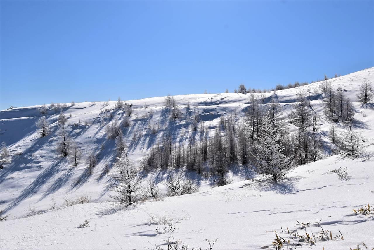 冬の鉢伏山 霧氷風景