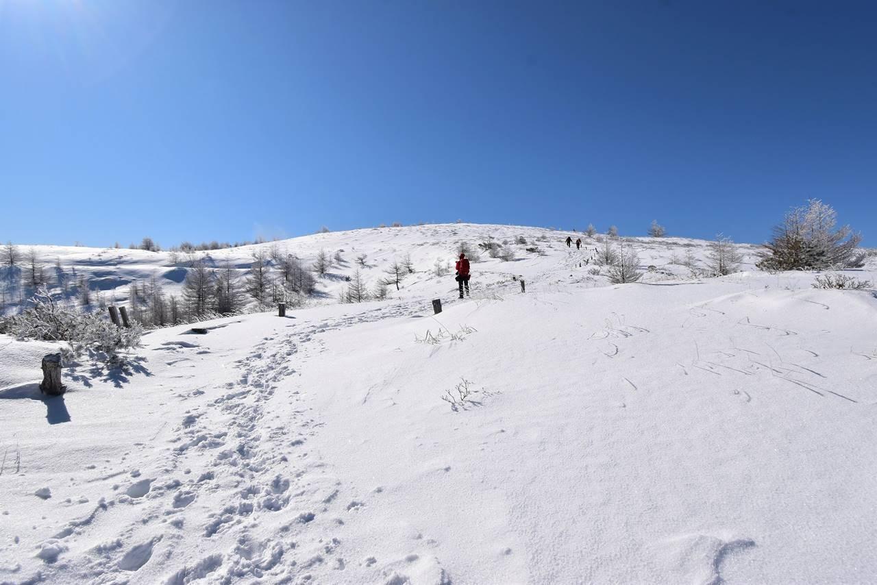 冬の鉢伏山登山 雪原と霧氷風景