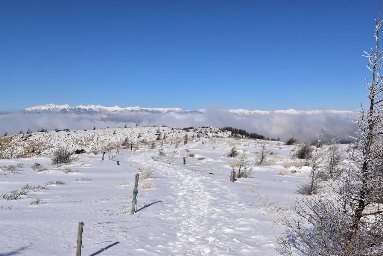 鉢伏山から眺める雪の北アルプスと雲海
