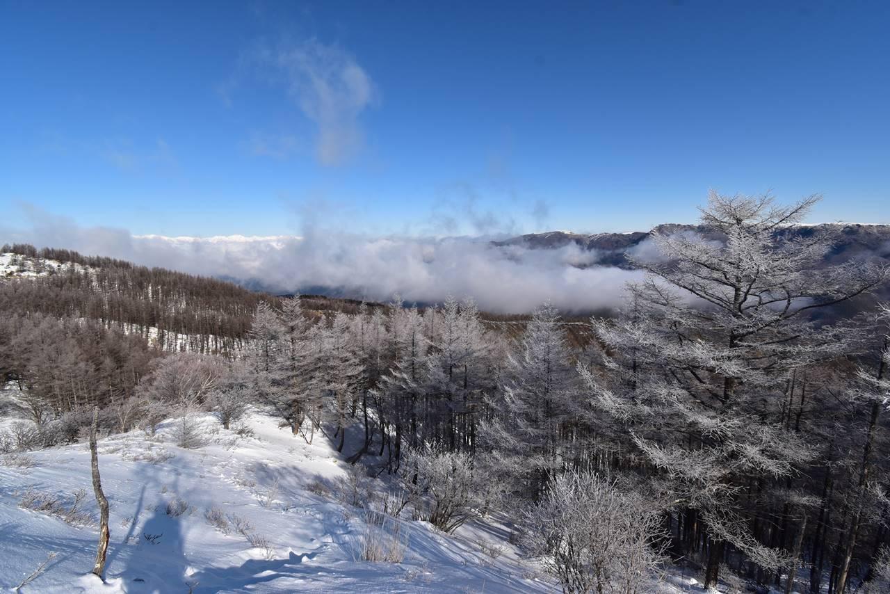 鉢伏山 登山道からの展望