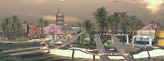 Aoshima - February 2020