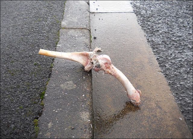 Just some bones in the street. 2020.