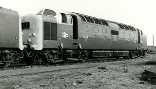55015 at Doncaster 25.4.82