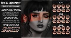 AsteroidBox. Spring Eyeshadow