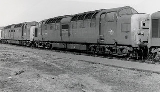 55008 & 55021 at Doncaster 25.4.82