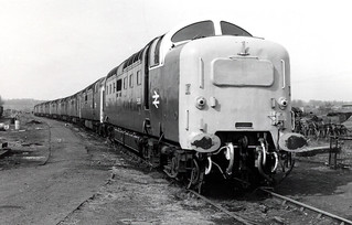 55015 heads the line up of withdrawn Deltics at Doncaster 25.4.82