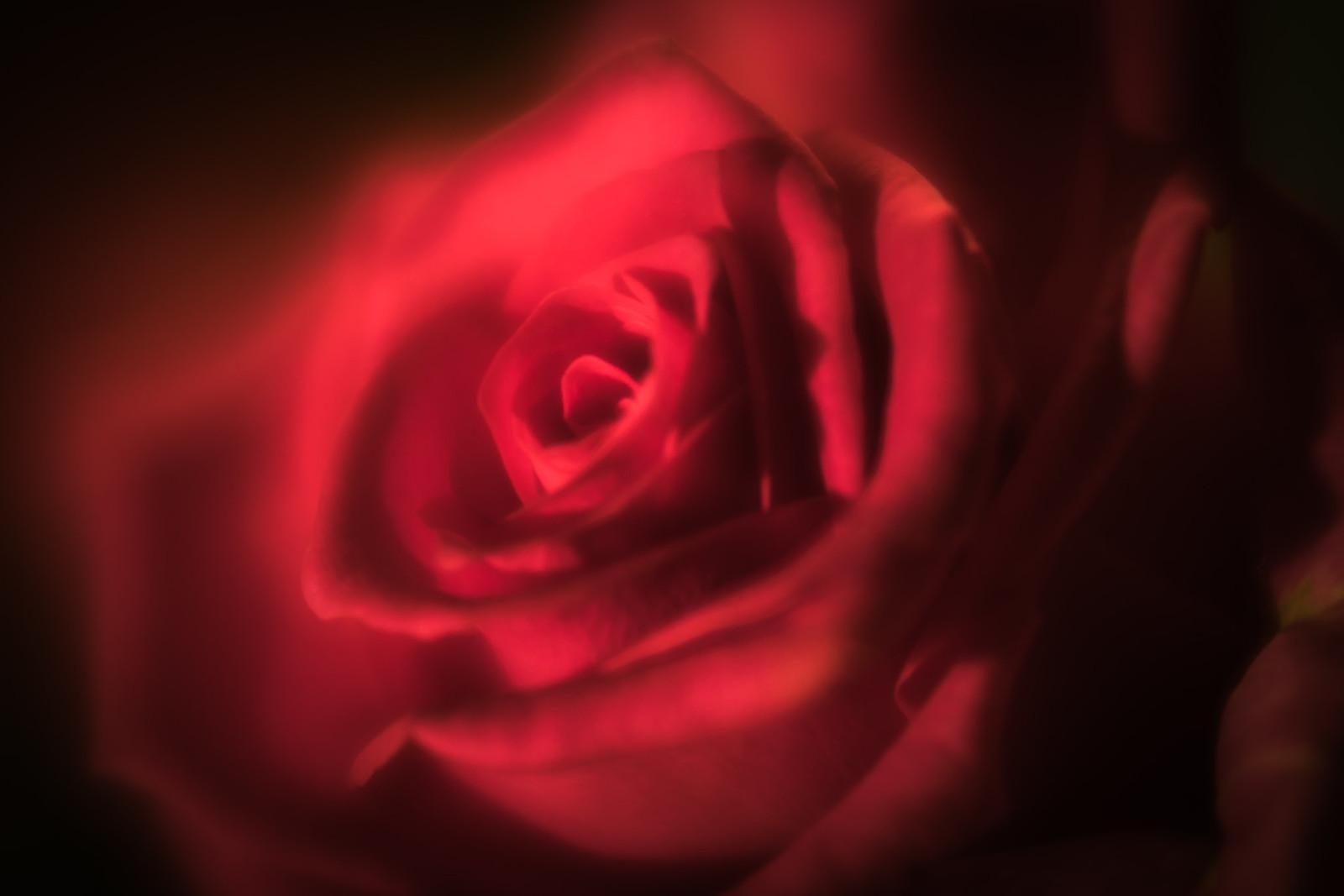 Valentines.......