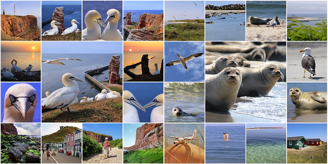 My best of Helgoland