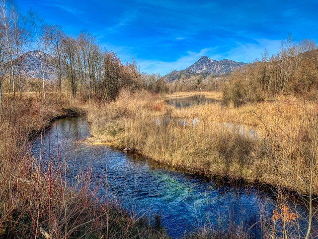 Small creek beside the river Inn near Oberaudorf, Bavaria, Germany