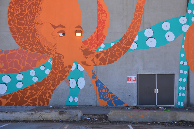 Octopus guarding the exit