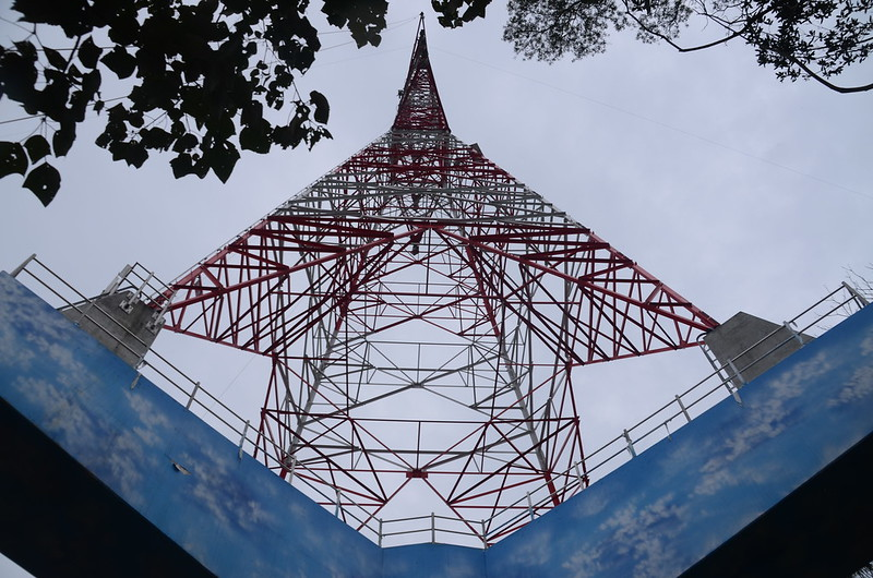 松樹江(三角山)山頂高壓輸電塔 (2)