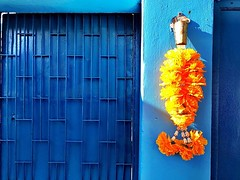 Orange & Blue :blue_heart: #bangkok #urbanhike