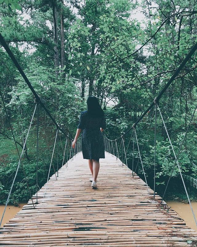 Phượt Hot - Những cây cầu dây treo giữa lòng Đà Lạt (14)